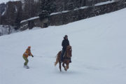 SKI & SNOWBOARD JOERING